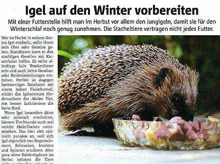 2. November 2020 | Dorstener Zeitung | Igel auf den Winter vorbereiten