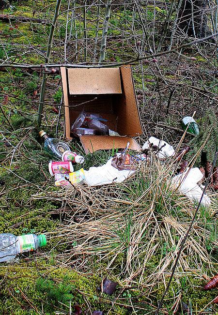 Müll ist eine Gefahrenquelle für Wildtiere
