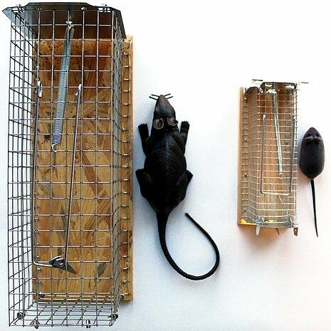 Lebendfallen für Mäuse und für Ratten