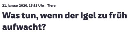 """21. Januar 2020   Süddeutsche   """"Was tun, wenn der Igel zu früh aufwacht"""""""