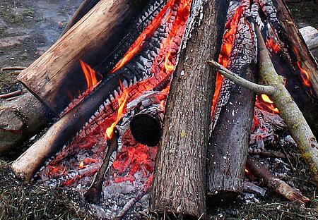 Feuer, tödliche Gefahr für Igel und Mäuse