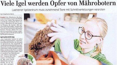 22. Oktober 2020   Hannoversche Allgemeine   Laatzen   Viele Igel werden Opfer von Mährobotern