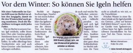 17. November 2020   Hallo Eichsfeld   Vor dem Winter: So können Sie Igeln helfen