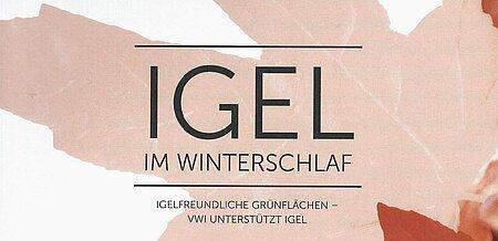 Februar 2020   VW-Immobilien   Igel im Winterschlaf