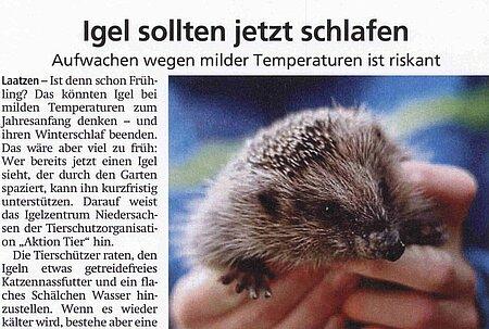 1. Februar 2020   Offenbach-Post   Igel sollten jetzt schlafen