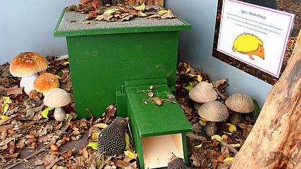 Modell eines Igelhauses