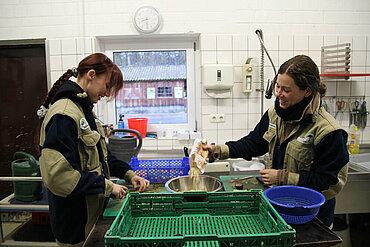 Vorbereitungen in der Futteküche