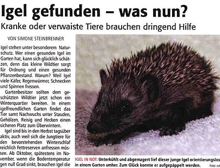 27. Oktober 2018 | Lünepost | Igel gefunden - was nun?